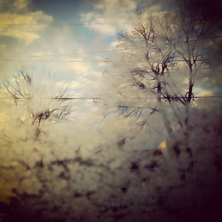 3B_Xiomaro_Frosted_Window
