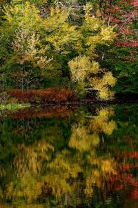 2_Xiomaro_Weir_Pond